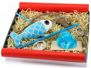 geschenkset-diy-dekofisch-geschenkbox