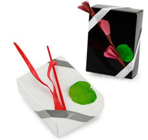 geschenkbox-deckeldesign
